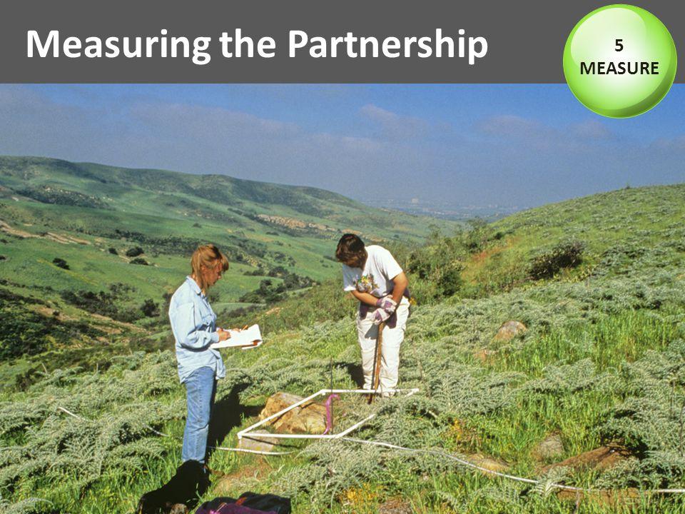 Measuring the Partnership 5 MEASURE