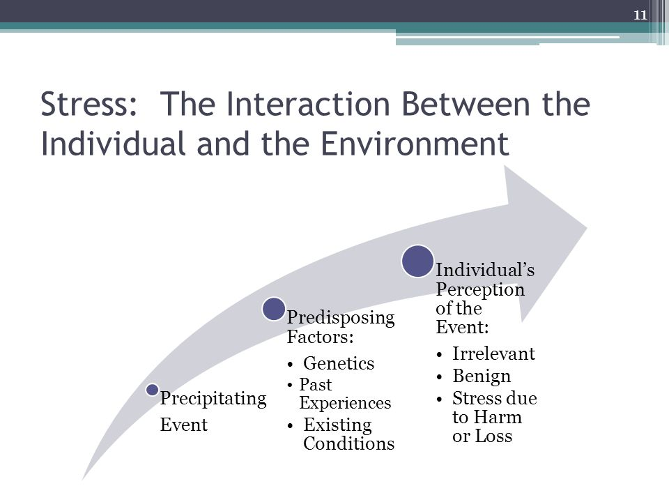 Stress: The Interaction Between the Individual and the Environment Precipitating Event Predisposing Factors: Genetics Past Experiences Existing Conditions Individuals Perception of the Event: Irrelevant Benign Stress due to Harm or Loss 11