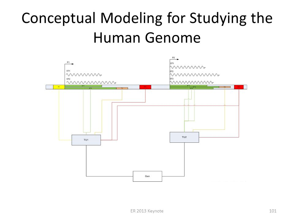 Conceptual Modeling for Studying the Human Genome ER 2013 Keynote101