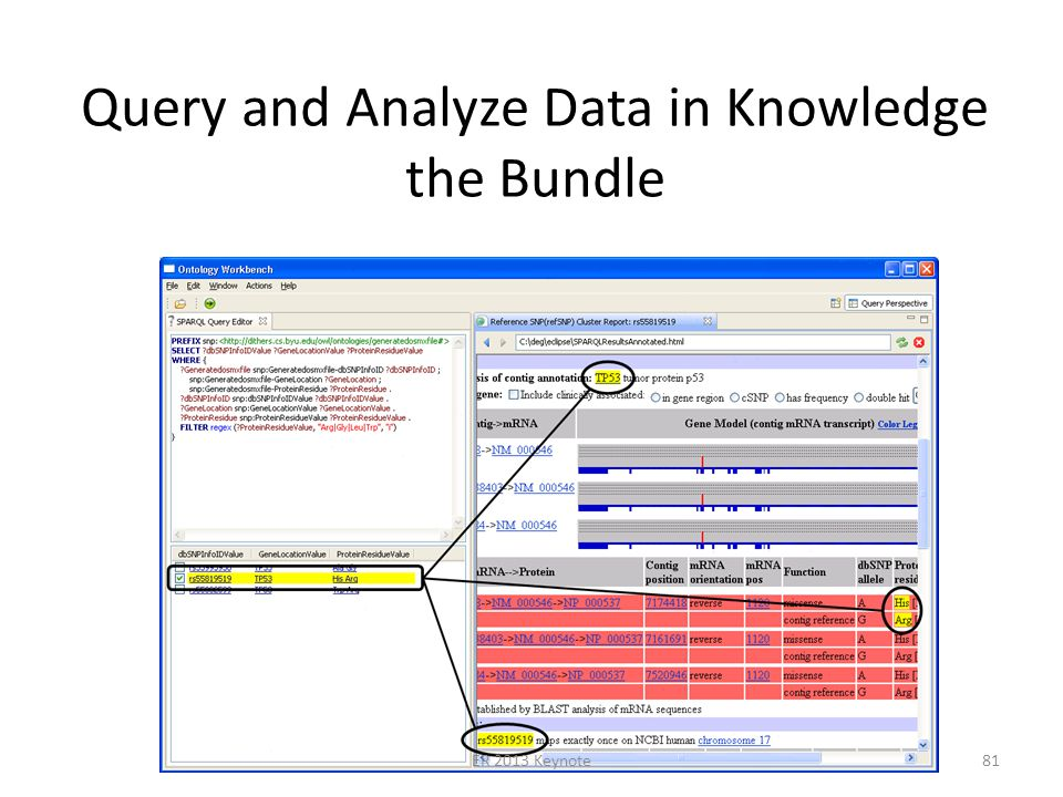 Query and Analyze Data in Knowledge the Bundle ER 2013 Keynote81