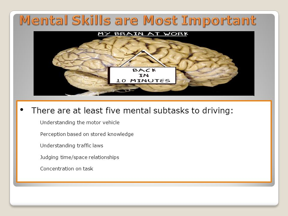 There are at least five mental subtasks to driving: Understanding the motor vehicle Perception based on stored knowledge Understanding traffic laws Judging time/space relationships Concentration on task