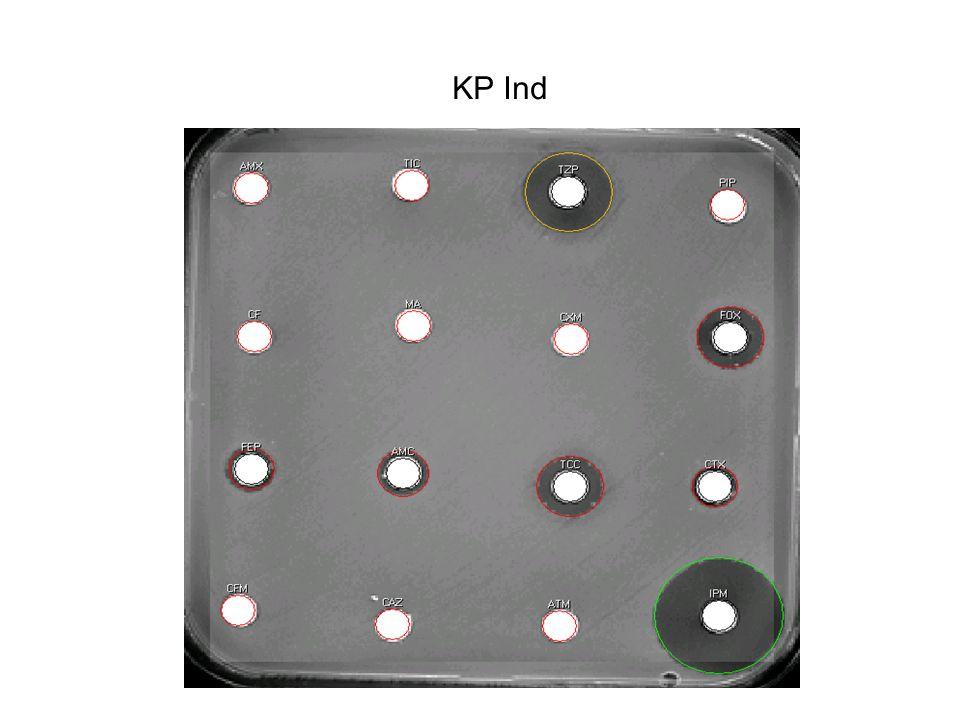 KP Ind