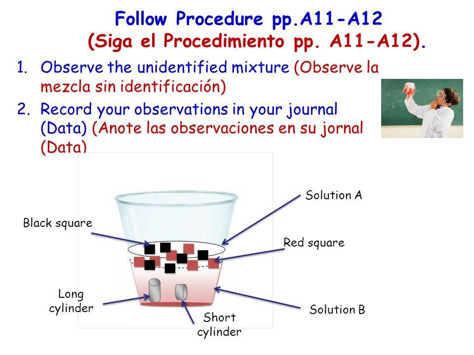 Follow Procedure pp.A11-A12 (Siga el Procedimiento pp. A11-A12). 1.Observe the unidentified mixture (Observe la mezcla sin identificación) 2.Record yo