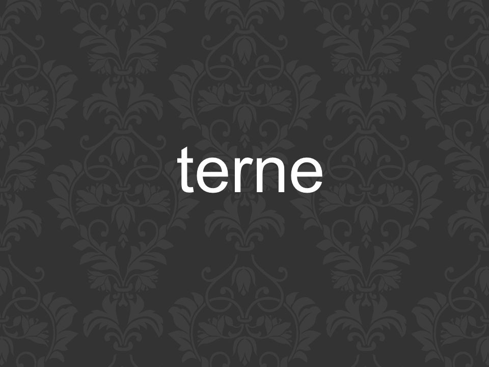 terne