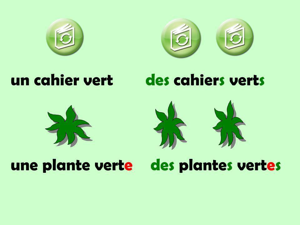 un cahier vertdes cahiers verts une plante vertedes plantes vertes