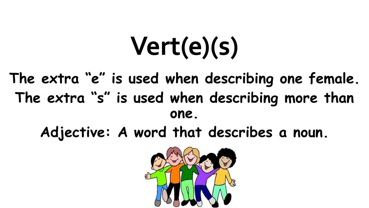 Vert(e)(s) The extra e is used when describing one female. The extra s is used when describing more than one. Adjective: A word that describes a noun.