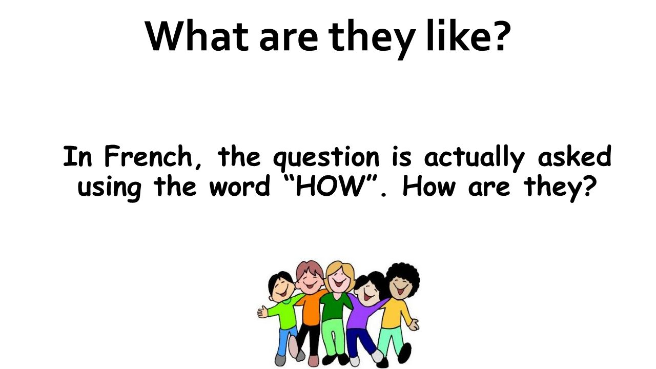 What are they like? In French, the question is actually asked using the word HOW. How are they?