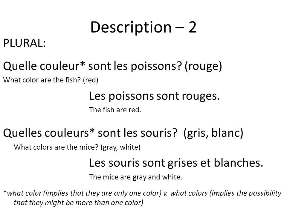 Description – 2 PLURAL: Quelle couleur* sont les poissons.