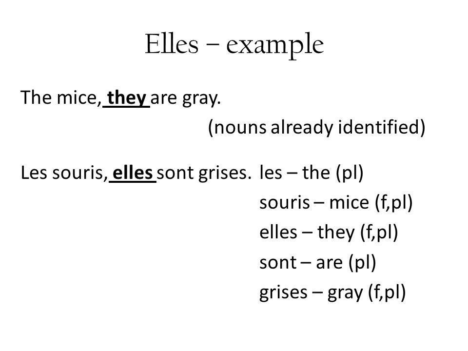 Elles – example The mice, they are gray.(nouns already identified) Les souris, elles sont grises.