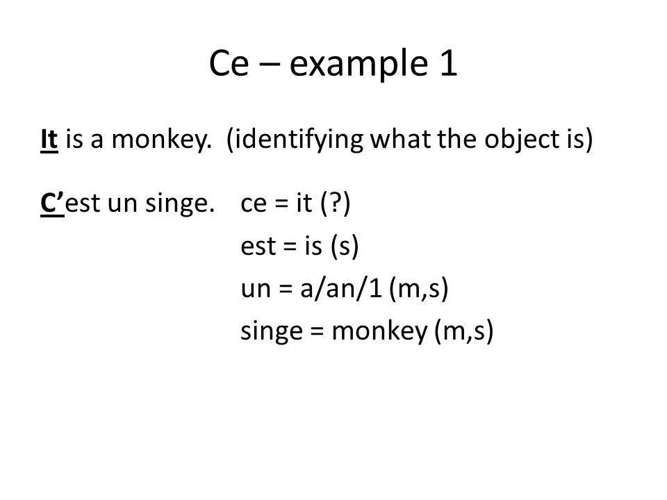 Ce – example 1 It is a monkey.