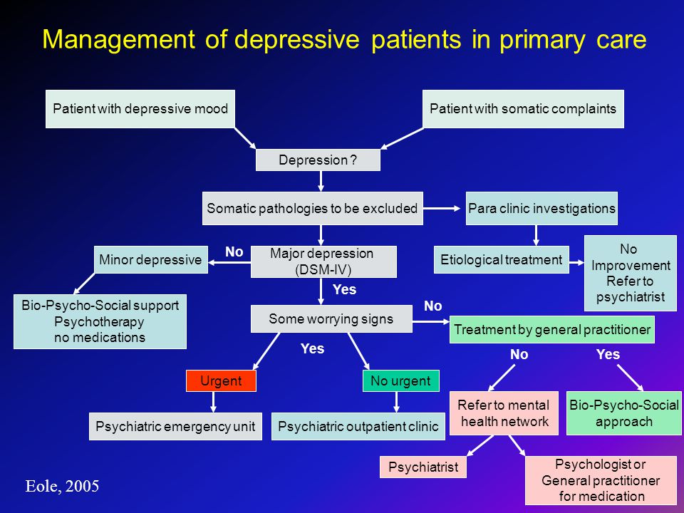 Management of depressive patients in primary care Patient with depressive mood Depression .