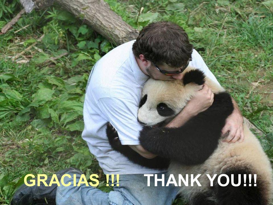 GRACIAS !! THANK YOU!!