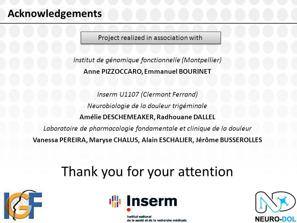 Acknowledgements Project realized in association with Institut de génomique fonctionnelle (Montpellier) Anne PIZZOCCARO, Emmanuel BOURINET Inserm U1107 (Clermont Ferrand) Neurobiologie de la douleur trigéminale Amélie DESCHEMEAKER, Radhouane DALLEL Laboratoire de pharmacologie fondamentale et clinique de la douleur Vanessa PEREIRA, Maryse CHALUS, Alain ESCHALIER, Jérôme BUSSEROLLES Thank you for your attention