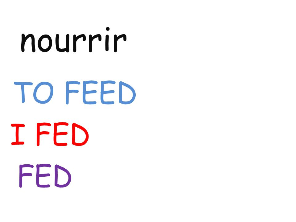 nourrir TO FEED I FED FED