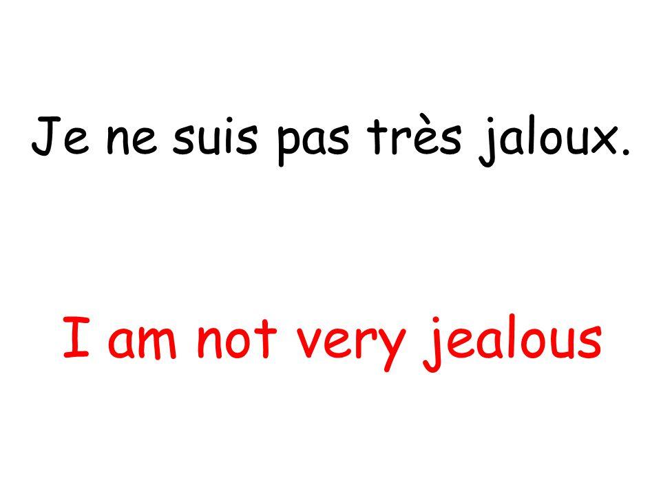 Je ne suis pas très jaloux. I am not very jealous