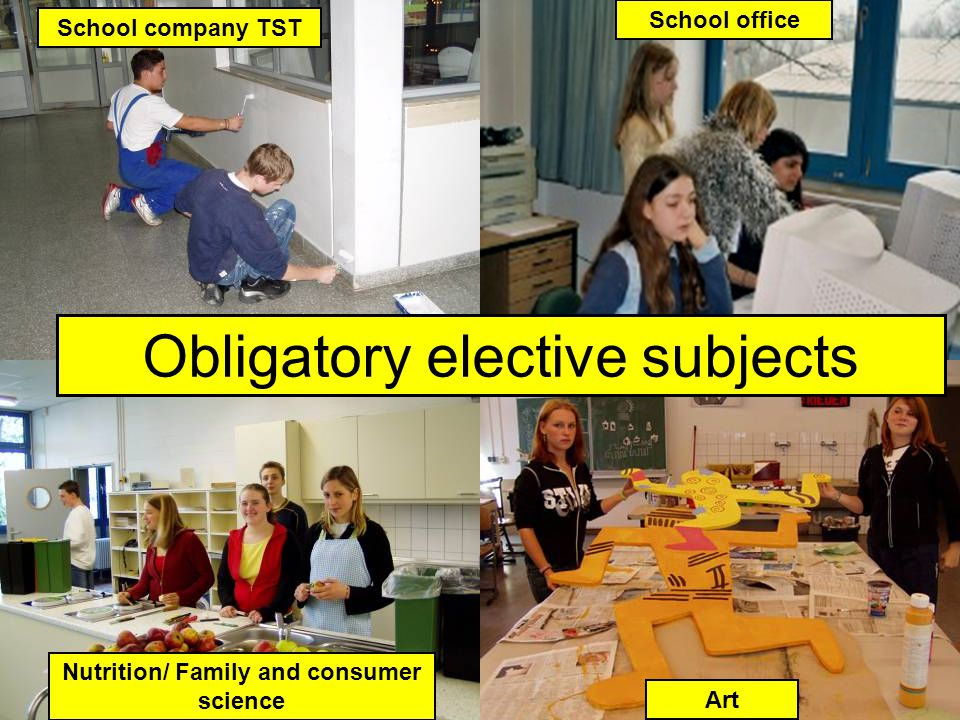 WP Obligatory elective subjects Nutrition/ Family and consumer science Art School company TST School office