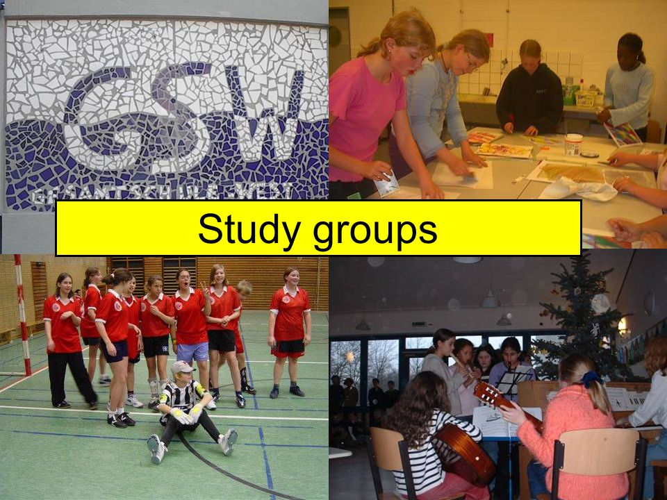 WAGs Study groups