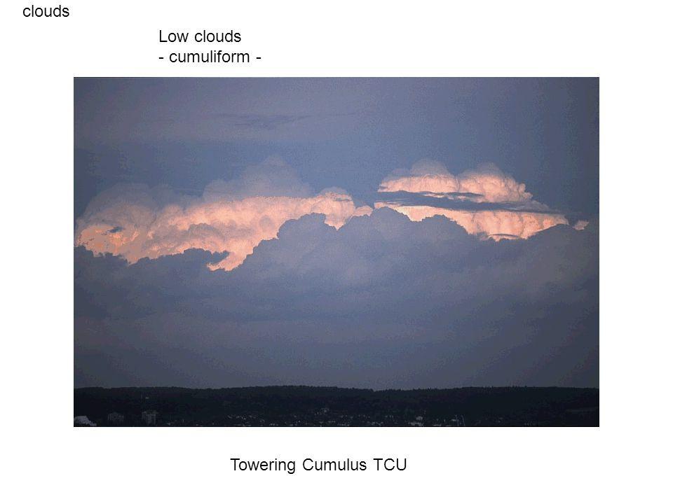 clouds Towering Cumulus TCU Low clouds - cumuliform -