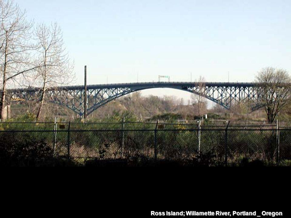 Ross Island; Willamette River, Portland _ Oregon