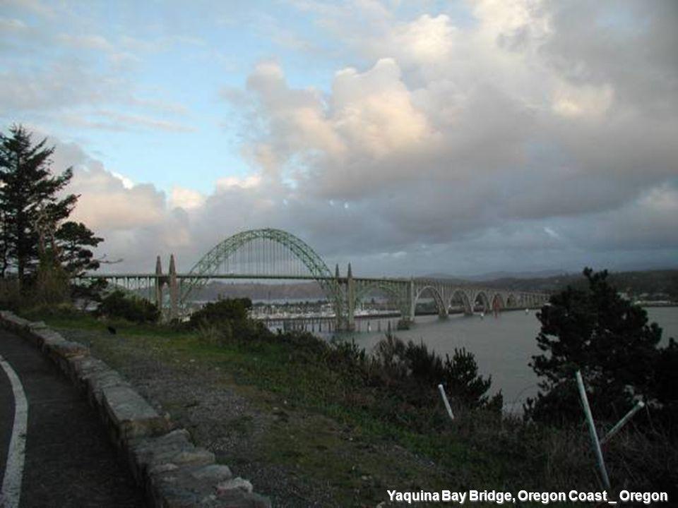 Yaquina Bay Bridge, Oregon Coast _ Oregon