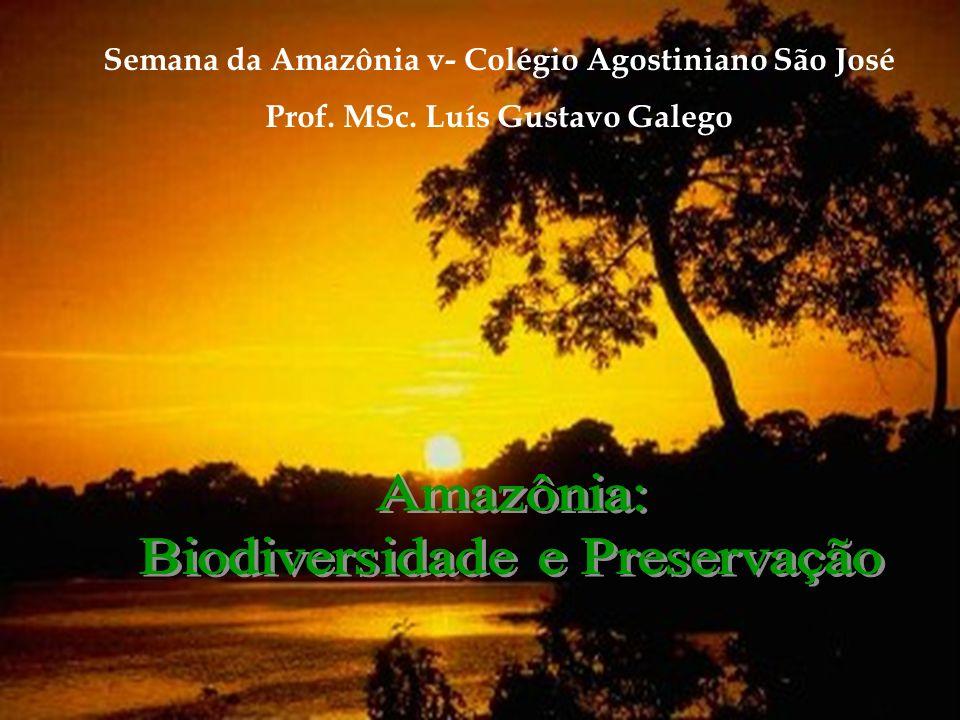 Semana da Amazônia v- Colégio Agostiniano São José Prof. MSc. Luís Gustavo Galego