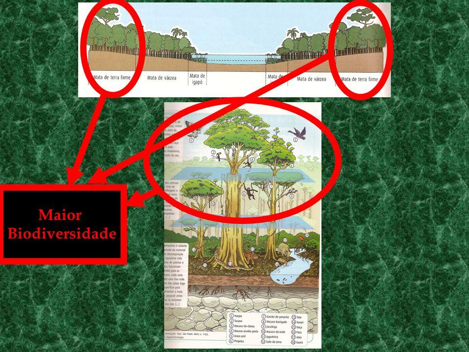 Maior Biodiversidade