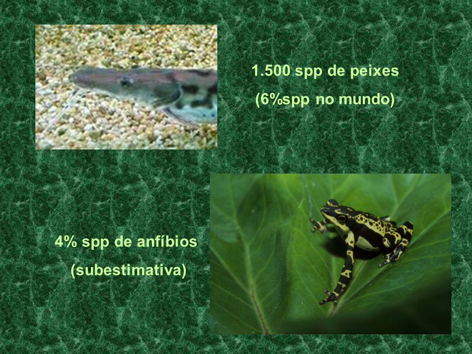 4% spp de Répteis Principalmente cobras e lagartos 12% spp de Aves