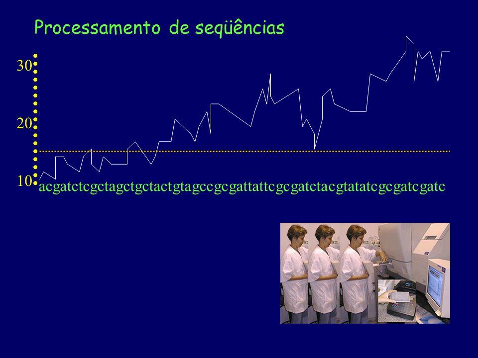 20 30 10 A nomeação é praticamente aleatória no início e no final, onde a chance de erro é alta (baixo valor de Phred) O programa Phred lê o cromatograma e nomeia as bases cromatograma acgatctcgctagctgctactgtagccgcgattattcgcgatctacgtatatcgcgatcgatc Cada base tem uma chance de erro de sua nomeação (10% = 0,1) A escala de Phred é semelhante à de pH multiplicado por 10: - chance de erro de 0,001 = 10 -3 = Phred 30 Processamento de seqüências