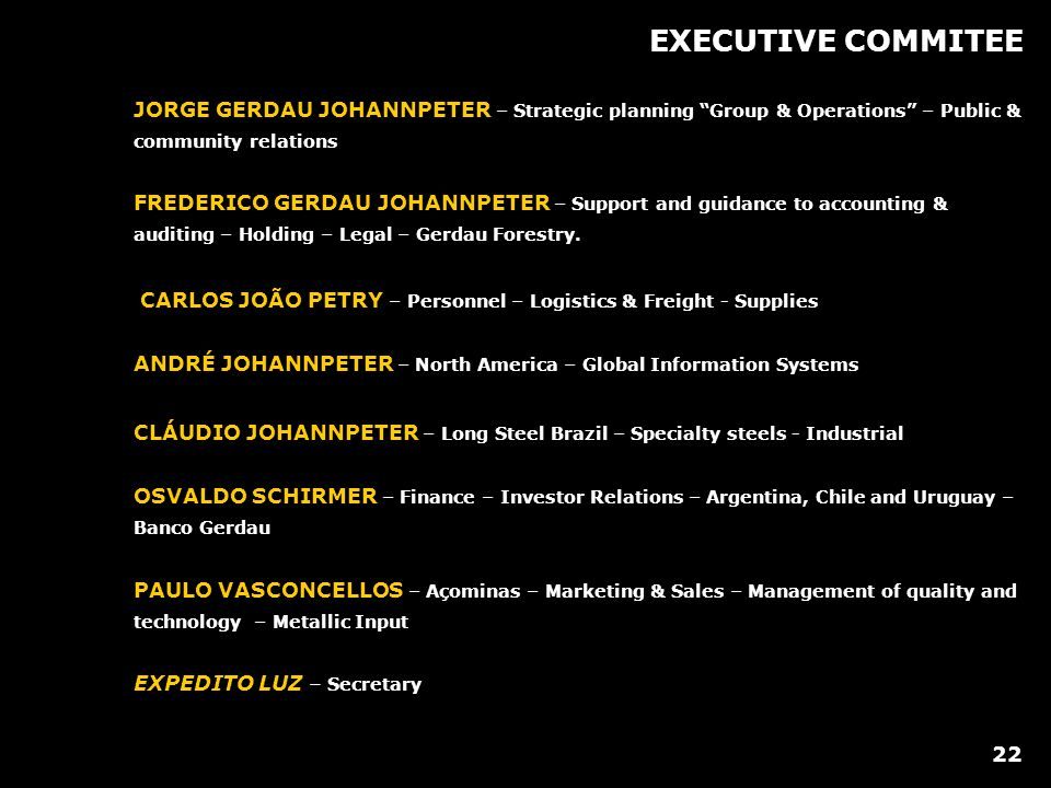 EXECUTIVE COMMITEE JORGE GERDAU JOHANNPETER – Strategic planning Group & Operations – Public & community relations FREDERICO GERDAU JOHANNPETER – Support and guidance to accounting & auditing – Holding – Legal – Gerdau Forestry.