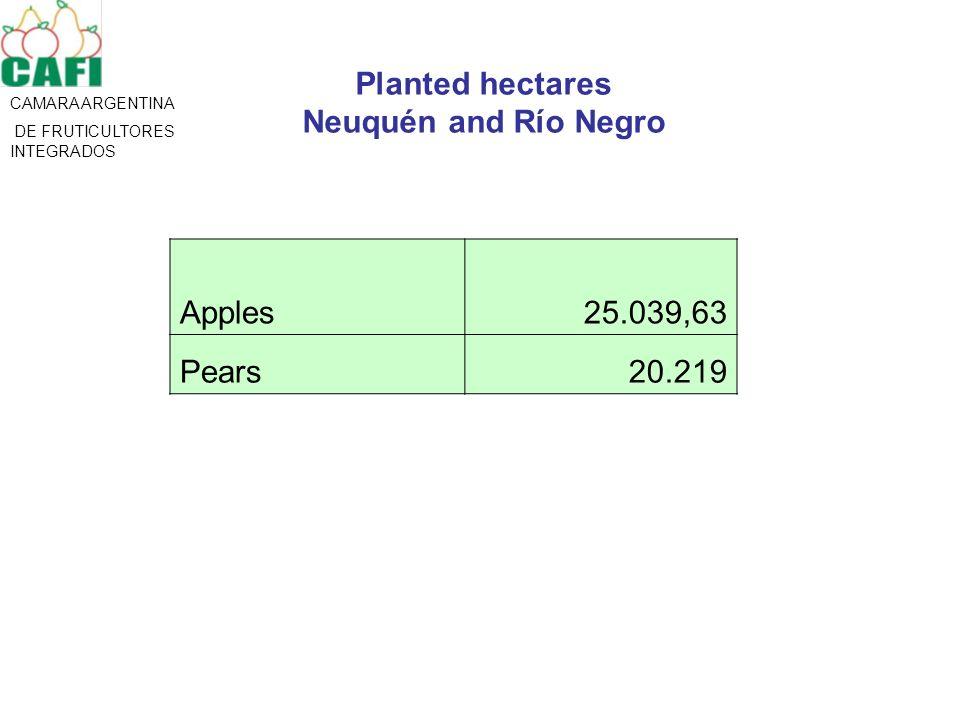CAMARA ARGENTINA DE FRUTICULTORES INTEGRADOS Planted hectares Neuquén and Río Negro Apples25.039,63 Pears20.219