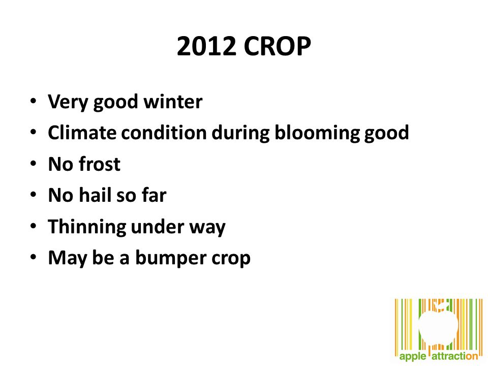 Very good winter Climate condition during blooming good No frost No hail so far Thinning under way May be a bumper crop 2012 CROP