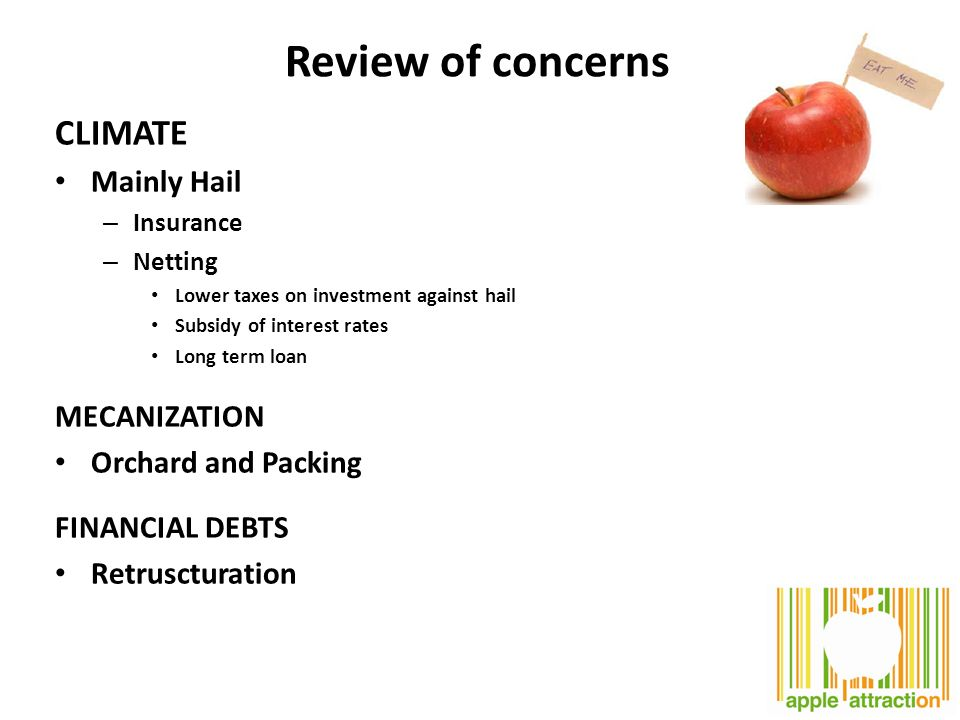 Review of concerns CLIMATE Mainly Hail – Insurance – Netting Lower taxes on investment against hail Subsidy of interest rates Long term loan MECANIZATION Orchard and Packing FINANCIAL DEBTS Retruscturation