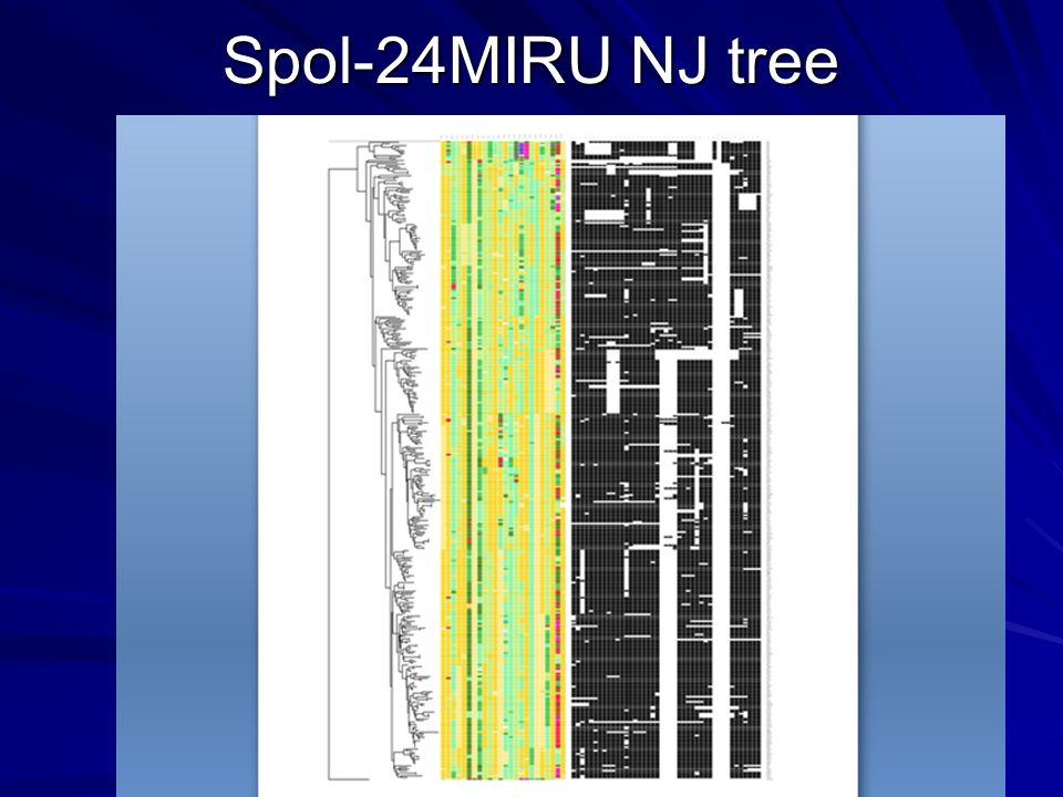 Spol-24MIRU NJ tree