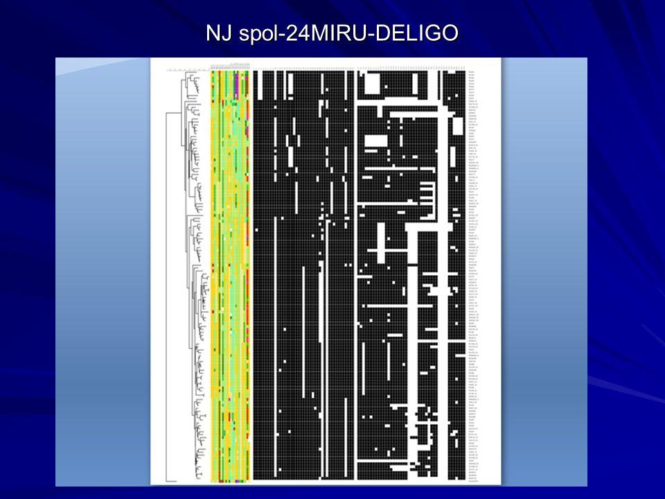 NJ spol-24MIRU-DELIGO
