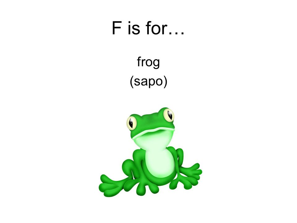 F is for… frog (sapo)