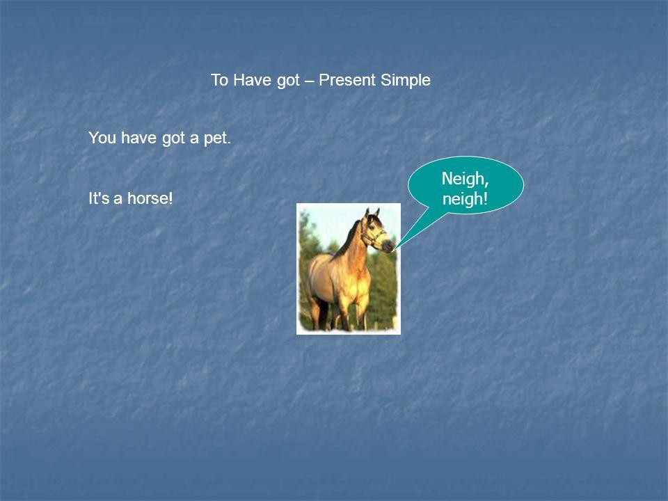 To Have got – Present Simple We have got a pet. It's a bird! Tweet, tweet !