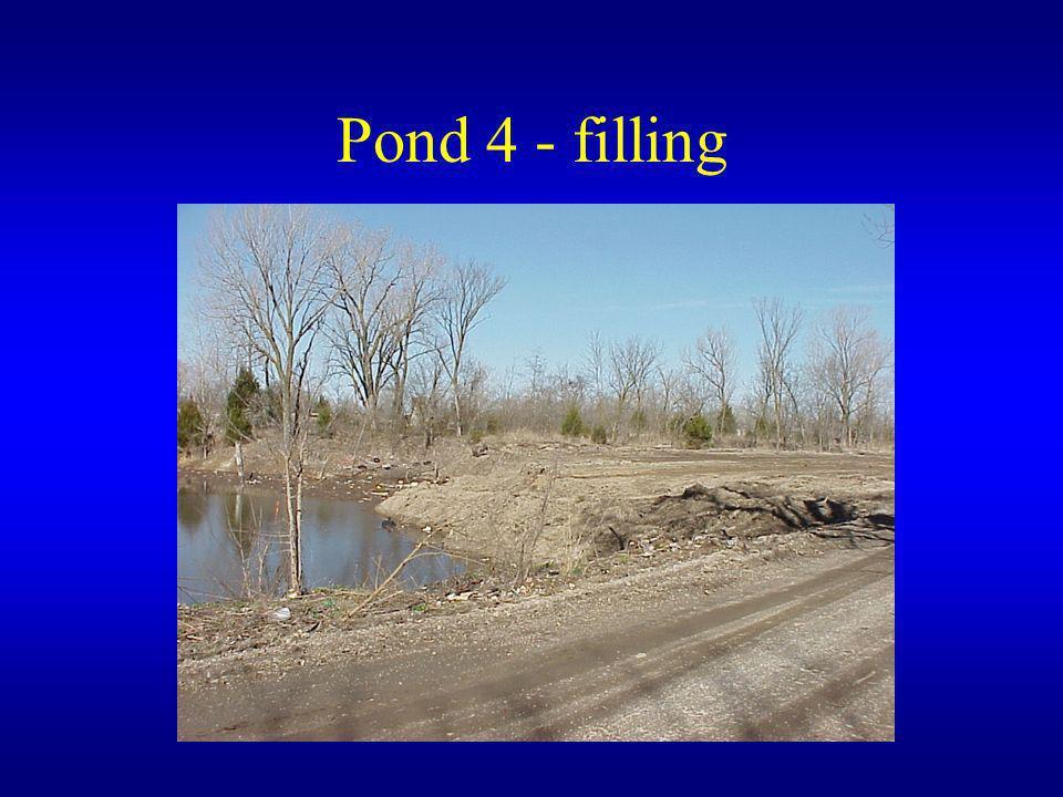 Pond 4 - filling