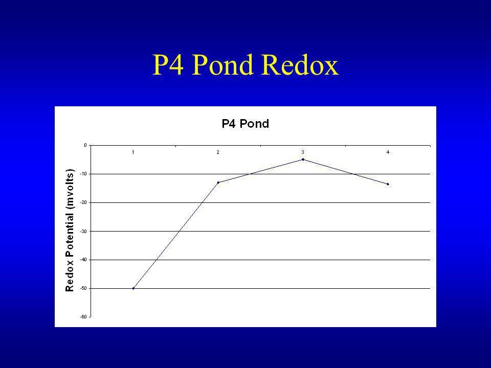 P4 Pond Redox