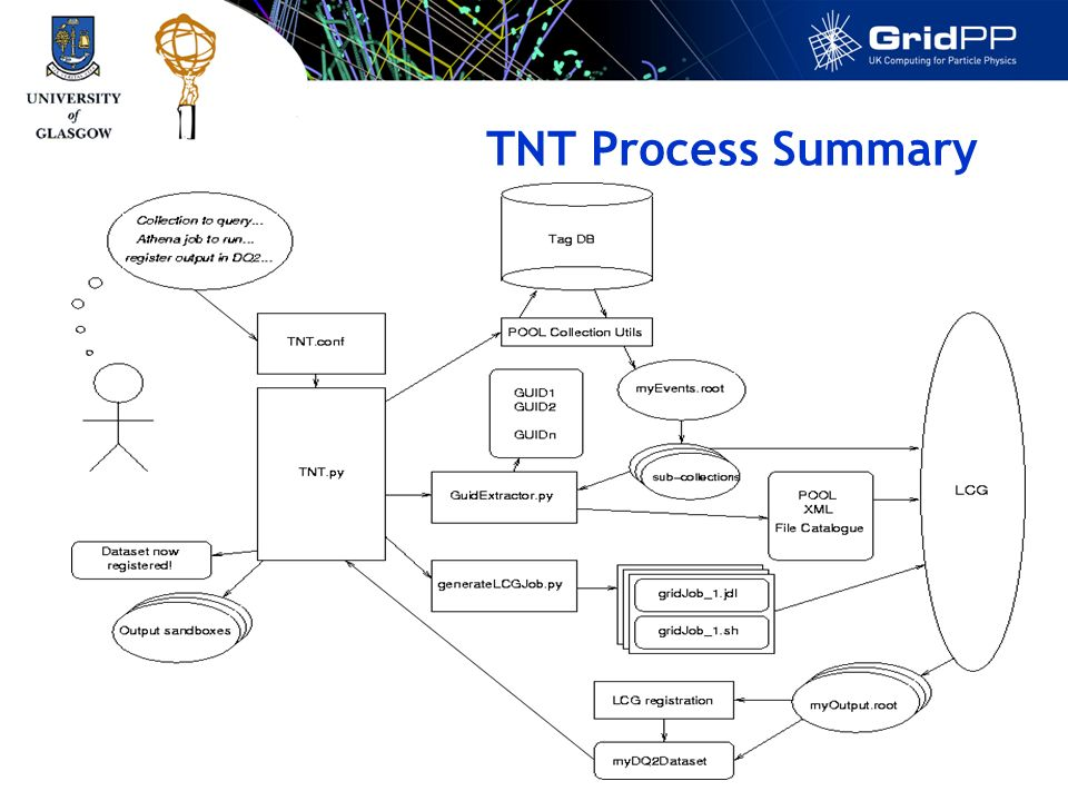 TNT Process Summary