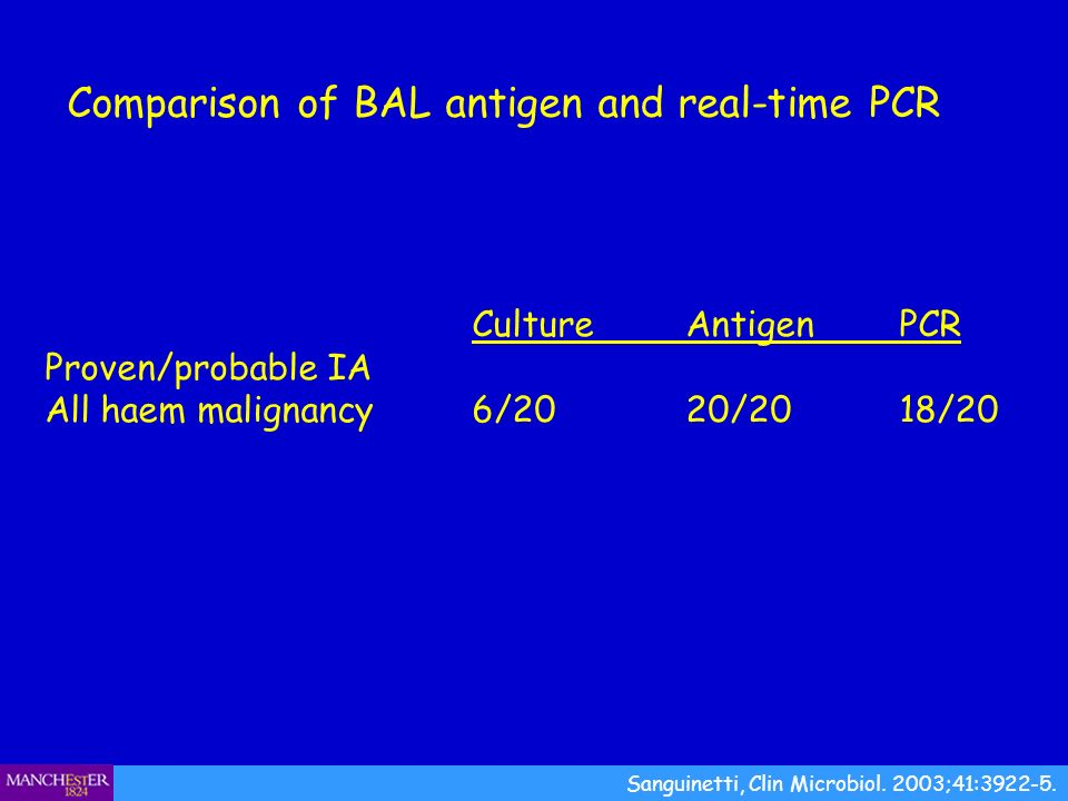 Comparison of BAL antigen and real-time PCR Sanguinetti, Clin Microbiol. 2003;41:3922-5. CultureAntigenPCR Proven/probable IA All haem malignancy 6/20