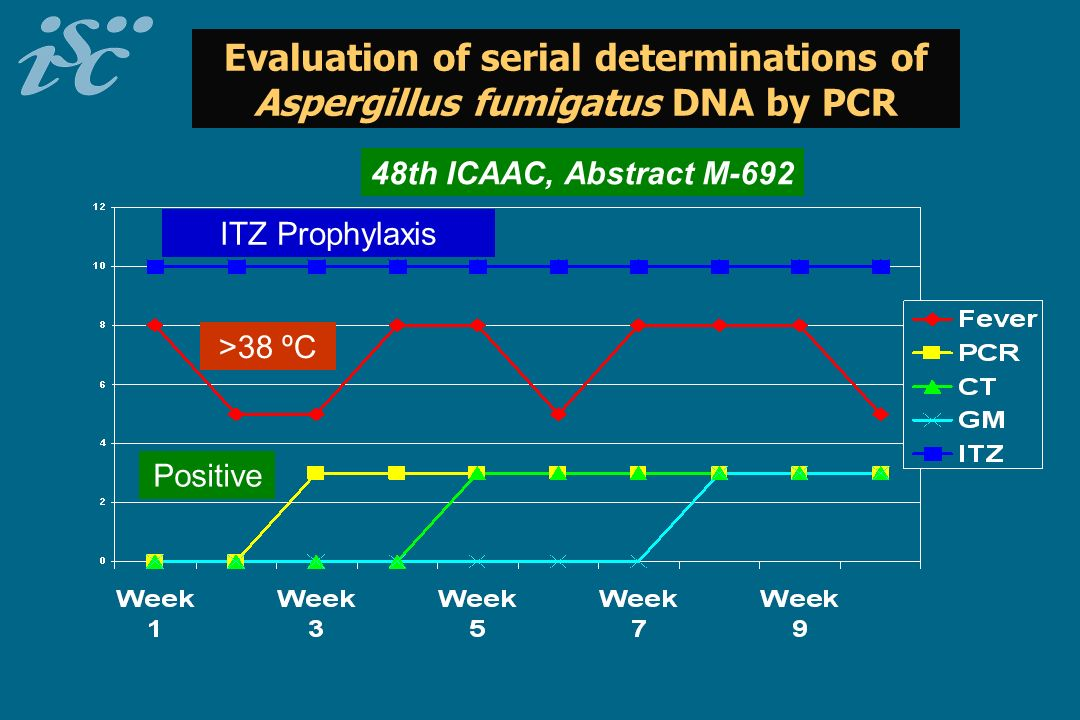 Evaluation of serial determinations of Aspergillus fumigatus DNA by PCR 48th ICAAC, Abstract M-692 Positive ITZ Prophylaxis >38 ºC