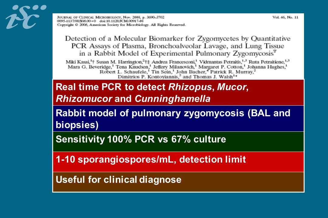 Real time PCR to detect Rhizopus, Mucor, Rhizomucor and Cunninghamella Rabbit model of pulmonary zygomycosis (BAL and biopsies) Sensitivity 100% PCR v