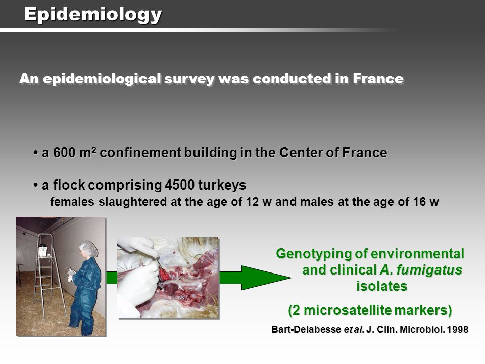 Epidemiology a 600 m 2 confinement building in the Center of France a 600 m 2 confinement building in the Center of France a flock comprising 4500 tur