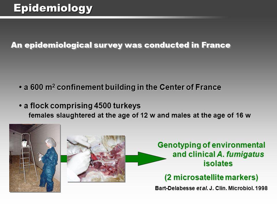 Epidemiology Lair-Fulleringer et al. Poultry Science 2006