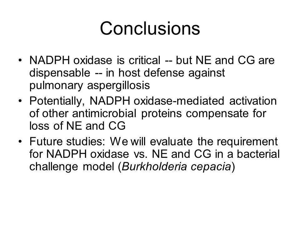 Conclusions NADPH oxidase is critical -- but NE and CG are dispensable -- in host defense against pulmonary aspergillosis Potentially, NADPH oxidase-mediated activation of other antimicrobial proteins compensate for loss of NE and CG Future studies: We will evaluate the requirement for NADPH oxidase vs.
