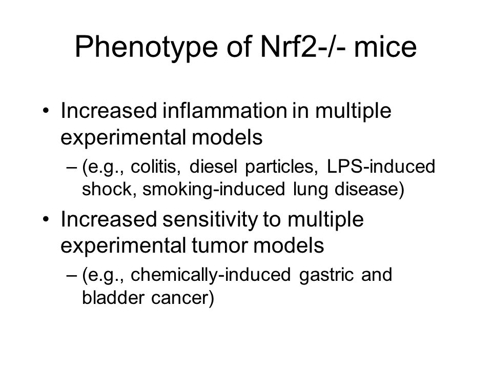 Phenotype of Nrf2-/- mice Increased inflammation in multiple experimental models –(e.g., colitis, diesel particles, LPS-induced shock, smoking-induced lung disease) Increased sensitivity to multiple experimental tumor models –(e.g., chemically-induced gastric and bladder cancer)