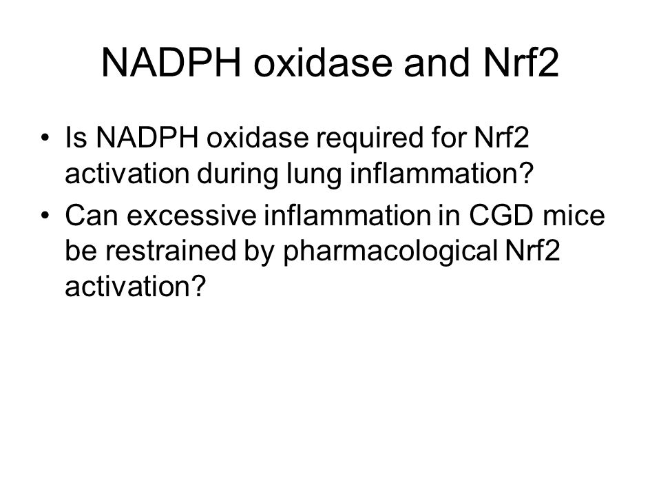 NADPH oxidase and Nrf2 Is NADPH oxidase required for Nrf2 activation during lung inflammation? Can excessive inflammation in CGD mice be restrained by