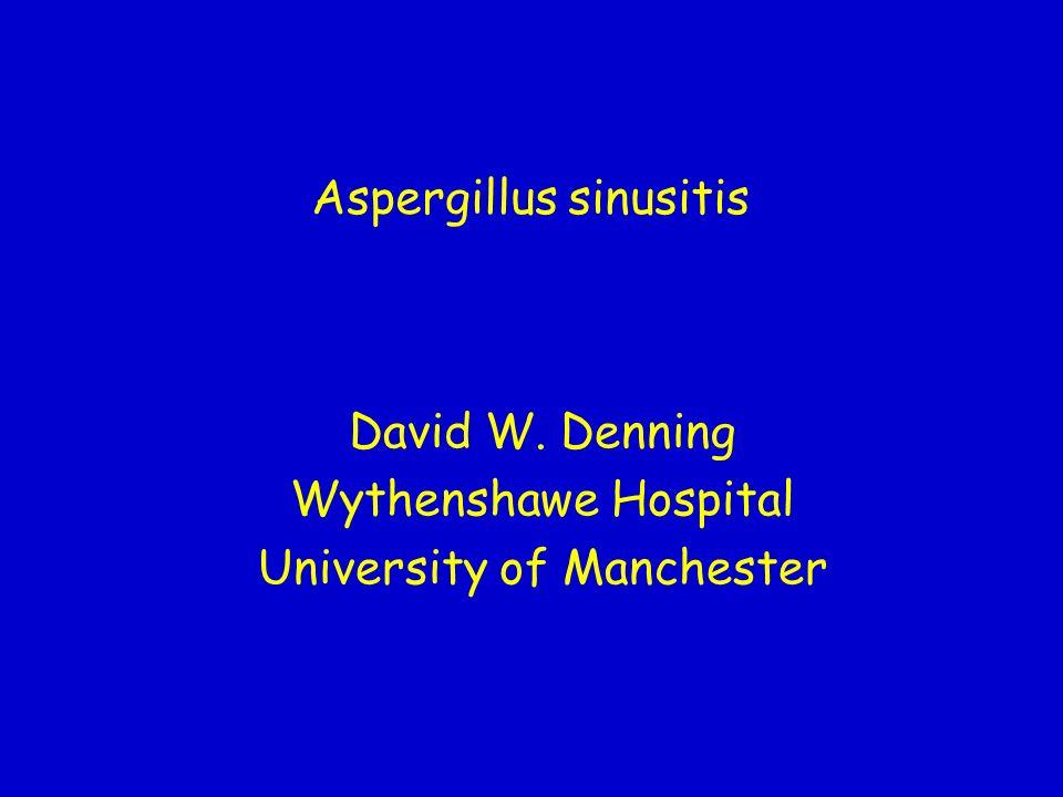 Aspergillus sinusitis David W. Denning Wythenshawe Hospital University of Manchester