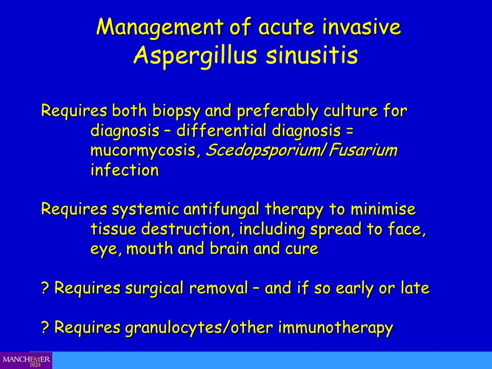 Management of acute invasive Management of acute invasive Aspergillus sinusitis Requires both biopsy and preferably culture for diagnosis – differenti