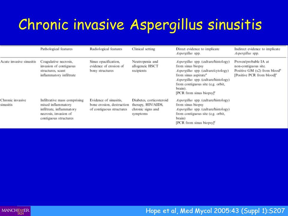 Hope et al, Med Mycol 2005:43 (Suppl 1):S207 Chronic invasive Aspergillus sinusitis